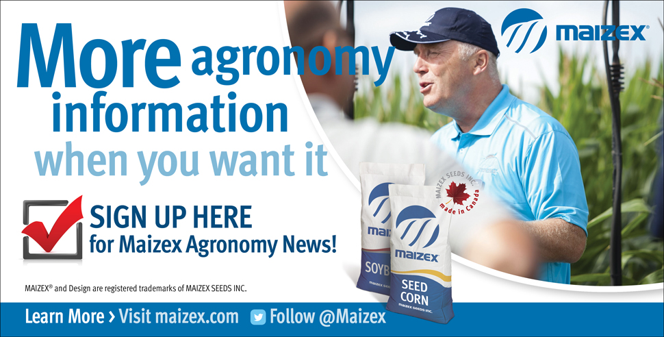 Subscribe to Maizex Agronomy News