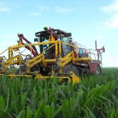 Maizex Seeds Inc. Cutter in a production field