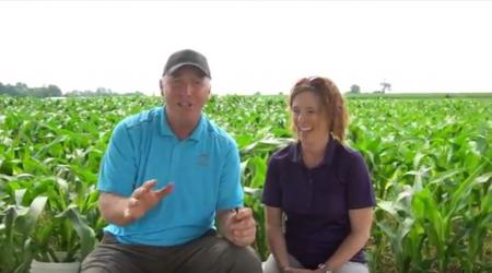 Maizex Greg Stewart and OMAFRA Tracey Baute talking about Western Bean Cutworm in corn