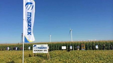 Maizex Agronomy Day Site 2014