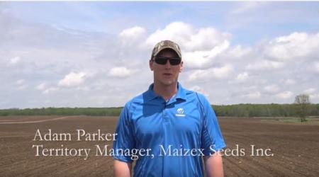 Maizex's Adam Parker in field discussing Greg Stewart's nitrogen research in corn