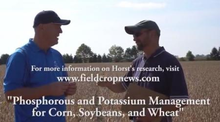 Maizex Greg Stewart and OMAFRA Horst Bohner in soybean field