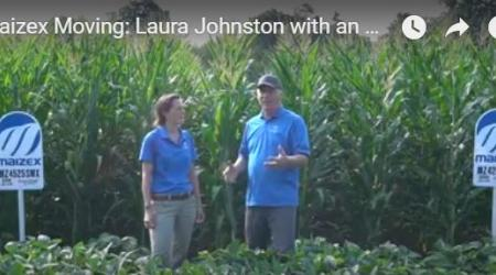 Maizex Territory Manager Laura Johnston and Agronomy Lead Greg Stewart in corn field