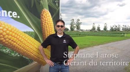 Stephane Larose, Maizex Territory Manager at Expo Champs in St-Liboire