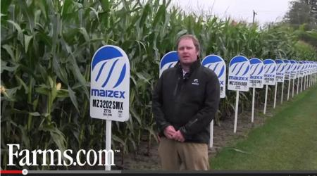 Maizex Yield Specialist in front of corn plot