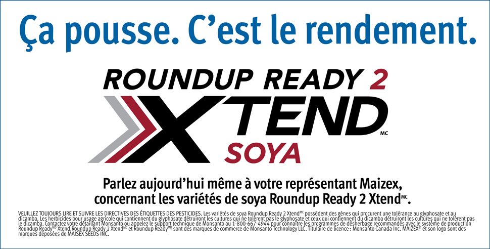Click for Maizex Xtend varieties